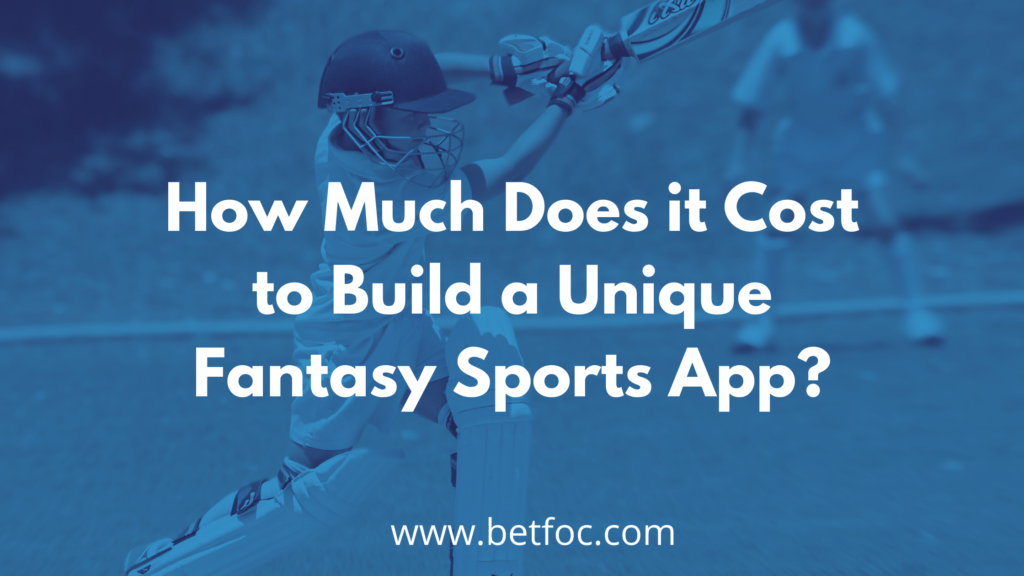 How Much Does it Cost to Build a Unique Fantasy Sports App?